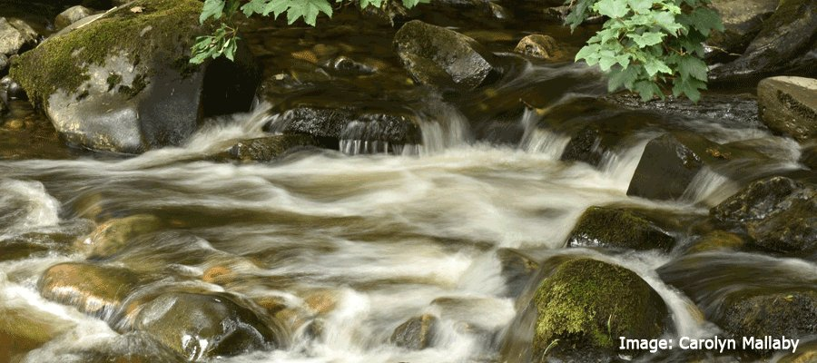 Water & its Moods in Longshaw Estate, Peak District